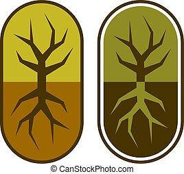 capsule, symbole, arbre, résumé