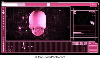 caractériser, interface, numérique, crâne