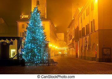 carré ville, arbre, noël, italy.