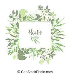 carrée, branches, cadre, isolé, collection, emblem., herbes, arrière-plan vert, frais, silhouette, blanc, plants., magasin