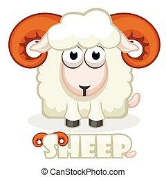 carrée, mignon, mouton, dessin animé
