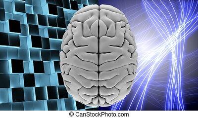 carrés, briller, lumière, lignes, cerveau, blanc