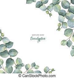 carte, eucalyptus, branches, arrière-plan., vecteur, dollar, aquarelle, floral, feuilles, isolé, blanc, argent, vert