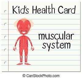 carte, musculaire, santé, système