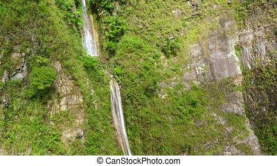 cascade, eau, ruisseau, luzon, île, jungle., philippines., chute eau, falaise