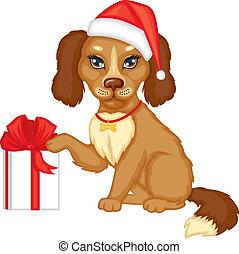 casquette, chien, cadeau