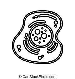 cellule, isolé, structure, icône