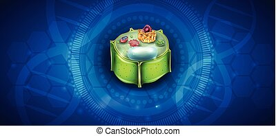 cellule, plante, structure