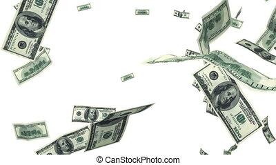 cent, voler, dollar, haut, factures
