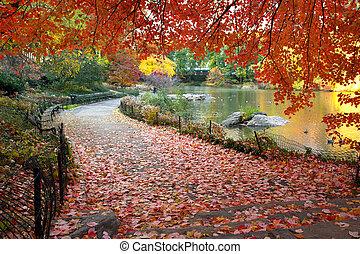 central, feuilles, parc, york, automne, nouveau