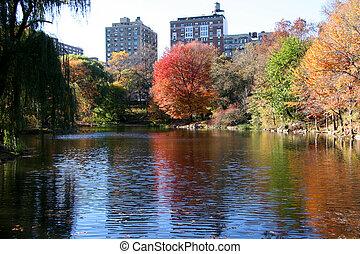 central, nouveau, parc, york, automne