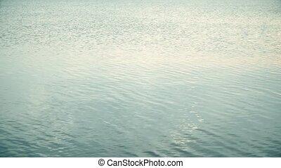 cercles, surface, partir, eau, sauts, ondulations, rocher, travers, calme
