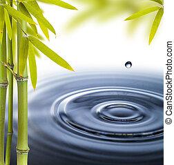cercles, vie eau, encore, spa