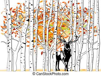cerf, forêt, profond