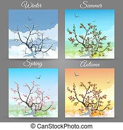 cerise, différent, arbre, saisons