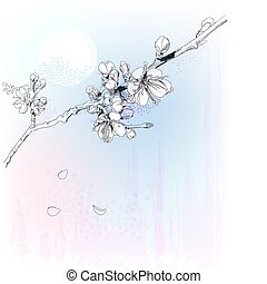 cerise, fleur pleine, fleurs