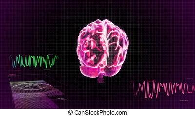 cerveau, 3d, écran, balayage, rouges, vague