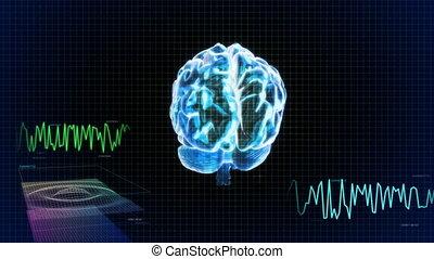 cerveau, 3d, écran, balayage, vague