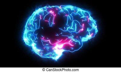 cerveau, animation, vidéo, laser, humain