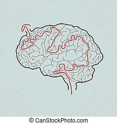 cerveau, labyrinthe, correct, sentier