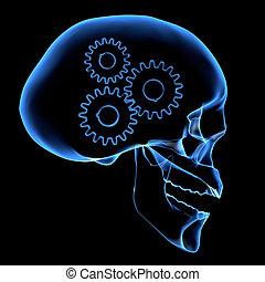 cerveau, mécanisme