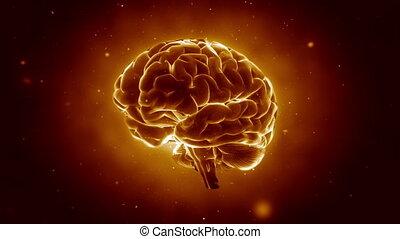 cerveau, pulsing, grand, fort
