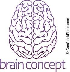 cerveau, résumé, illustration