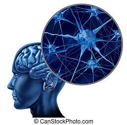 cerveau, symbole médical, humain