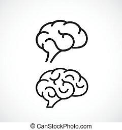 cerveau, vecteur, linéaire, humain, icône