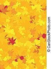 châtaigne, rouges, wallpaper., saturé, jaunes, coloré, former, automne, érable, oranges