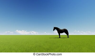 champ, cheval, herbe, vert