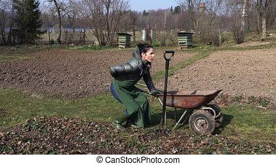 champ, femme, douleur, dos, jardinier