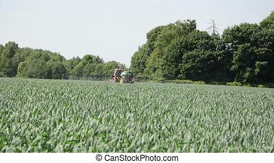 champ ferme, maïs, tracteur