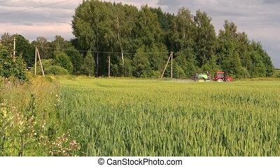 champ ferme, pulvérisation, paysan