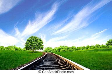 champ, ferroviaire, vert
