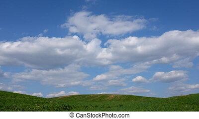 champ, flotter, nuages, sur