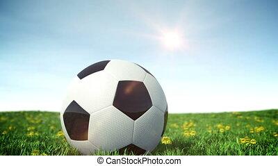 champ, football, herbe, balle verte