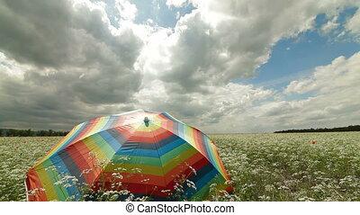 champ, parapluie