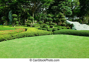 champ, parc, herbe, vert
