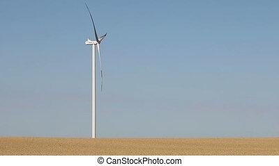 champ, turbine, blé, vent