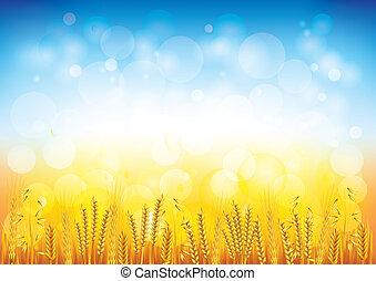champ, vecteur, blé, fond