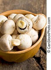 champignons, céramique, champignon, bowl.