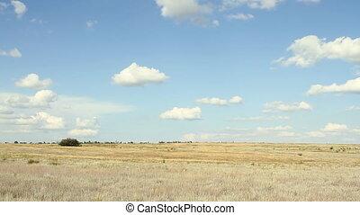 champs, défaillance, sky., temps