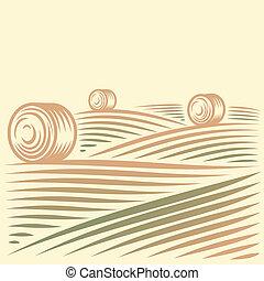 champs, meules foin, paysage