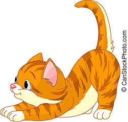 chat, cheveux, étirage, mignon, rouges