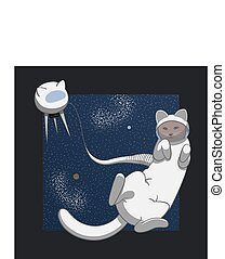 chat, espace