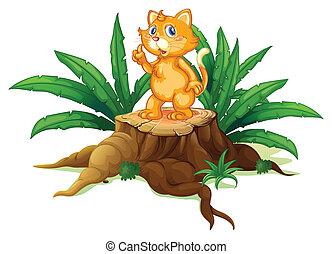 chat, feuilles, souche, debout