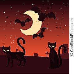 chat, lune, scène, noir, halloween