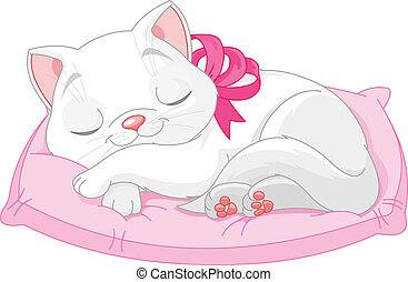 chat, mignon, blanc