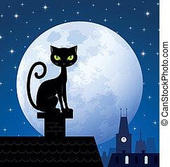 chat, noir, lune